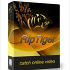 RipTiger is a powerful, yet easy-to-use program that lets you capture multiple streaming videos from the web at once, and convert them to different formats.
