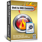 4Videosoft DivX to DVD Converter lets you convert videos in DivX and other popular file formats to DVD formats for playback on your television.