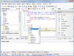 TSW WebCoder 2010 Screenshot