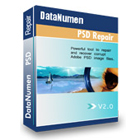 DataNumen PSD Repair (PC) Discount
