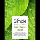 Gratitude IdeasDiscount