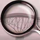 Magnifying Glass Pro (PC) Discount