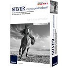 Silver Projects Professional (PC) Discount