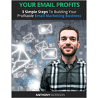 Your Email Profits - 3 Simple Steps to Building Your Profitable Email Marketing BusinessDiscount
