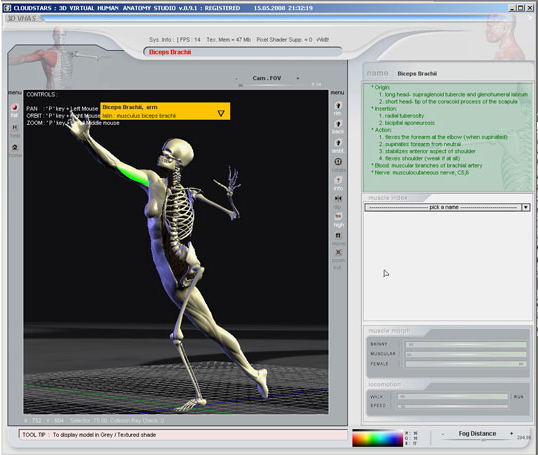 3D Virtual Human Anatomy Studio Screenshot