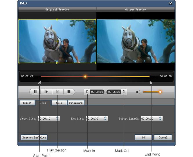 4Videosoft Blu-ray Ripper, Video Software Screenshot