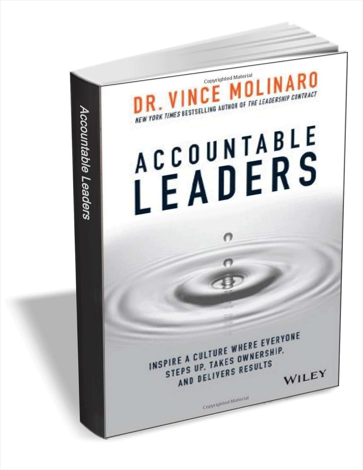Accountable Leaders: Inspire a Culture Where Everyone Steps Up, Takes Ownership, and Delivers Results ($15.00 Value) FREE for a Limited Time Screenshot