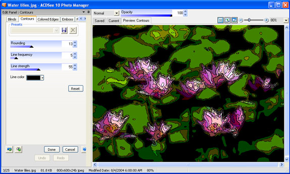 ACDSee 10, Design, Photo & Graphics Software, Image Viewer Software Screenshot