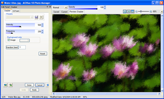 ACDSee 10 Screenshot 8