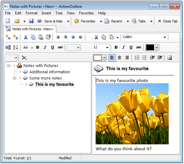 ActionOutline, PIM Software Screenshot