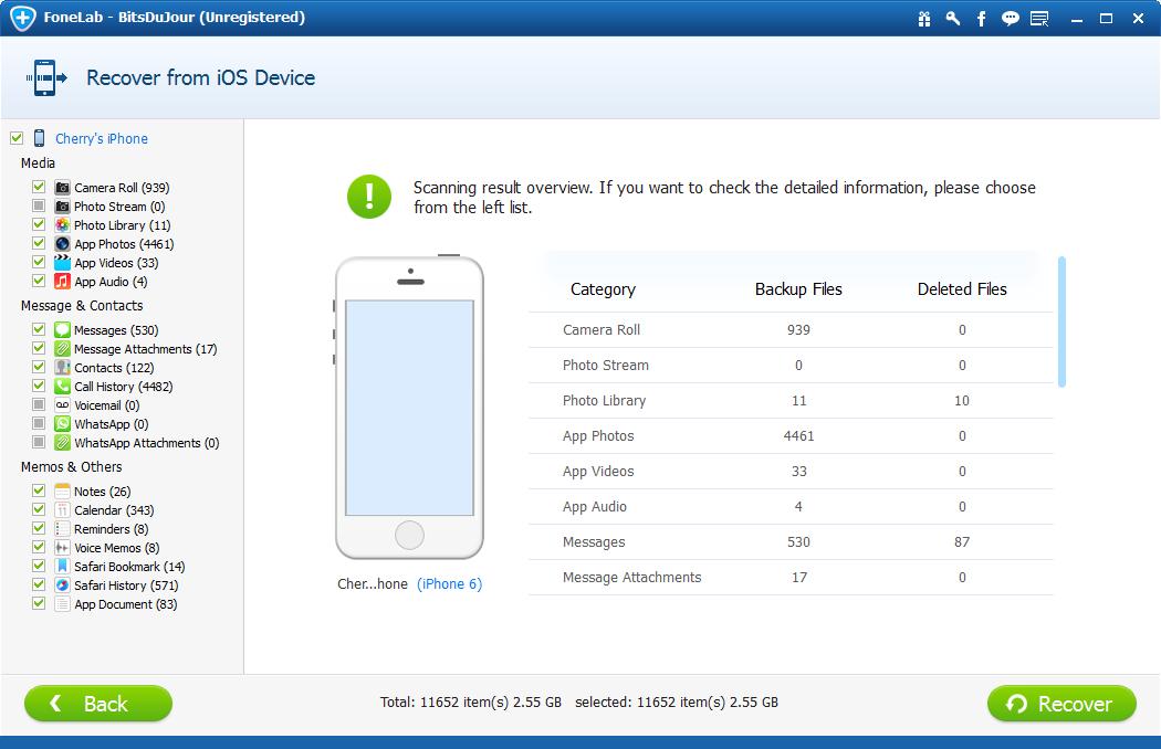 Recovery Software Screenshot