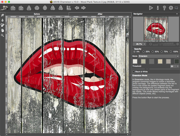AKVIS Chameleon Deluxe, Graphic Design Software Screenshot