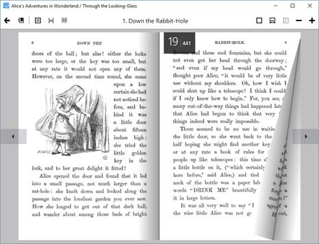 Organization Software, Alfa Ebooks Manager Professional Screenshot