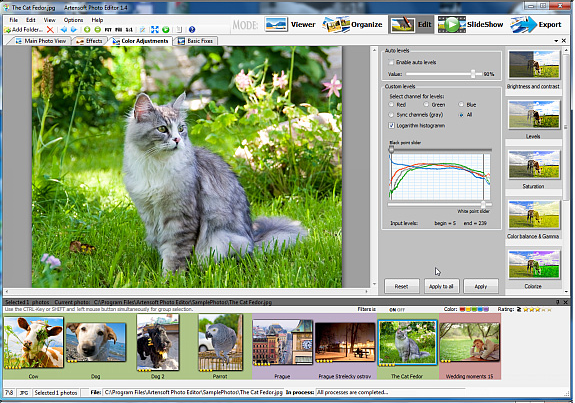 Batch Image Software, Artensoft Photo Editor Screenshot