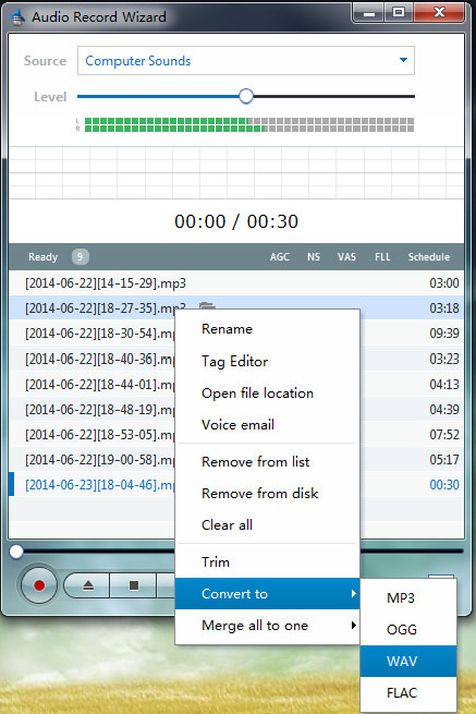 Audio Record Wizard, Audio Software Screenshot