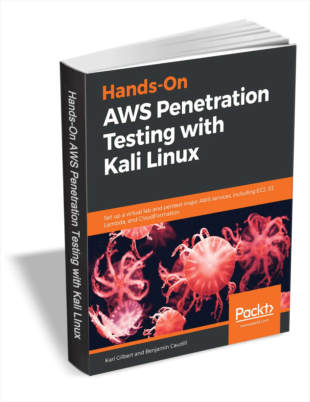AWS Penetration Testing with Kali Linux - Free Sample Chapters Screenshot