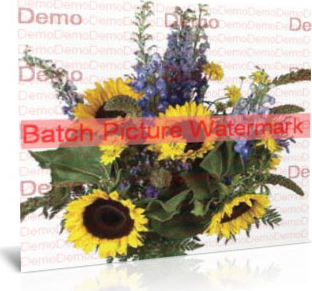 Batch Picture Protector, Design, Photo & Graphics Software Screenshot
