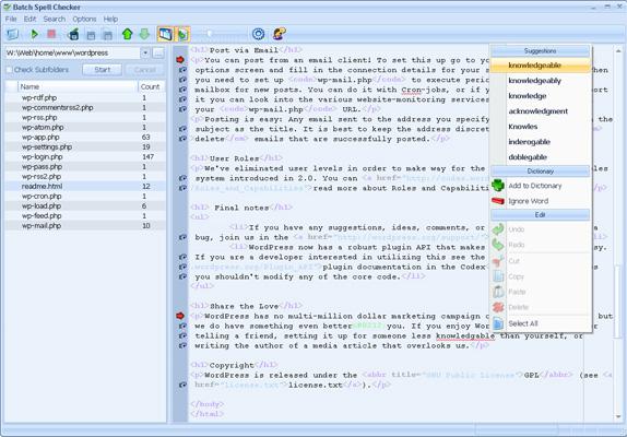 BatchSpellChecker Screenshot