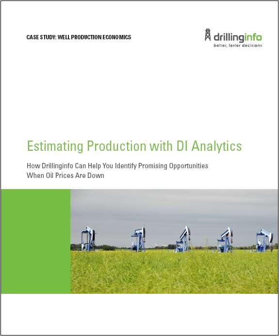 Case Study: Well Production Economics Screenshot