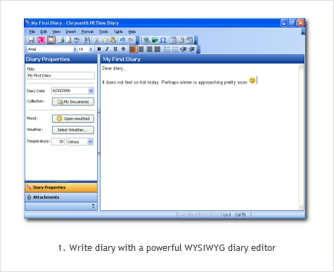 Chrysanth NETime Diary Screenshot