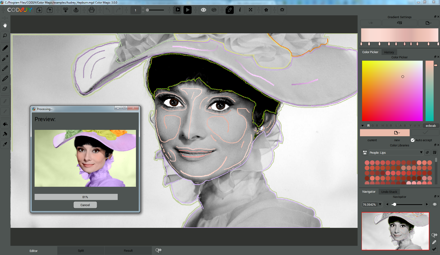 CODIJY Pro, Design, Photo & Graphics Software Screenshot