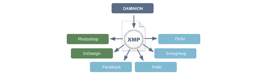 Daminion Server (5 users) Screenshot