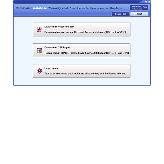 DataNumen Database Recovery Screenshot