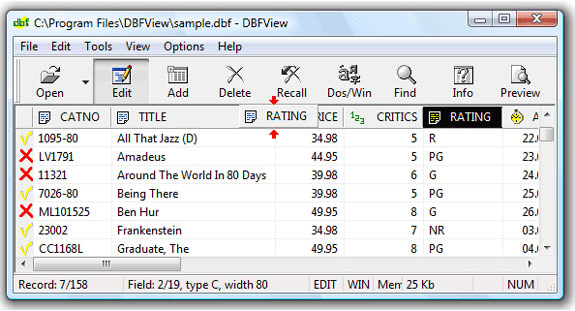 DBFView Unlimited Business License, Development Software, Database Management Software Screenshot