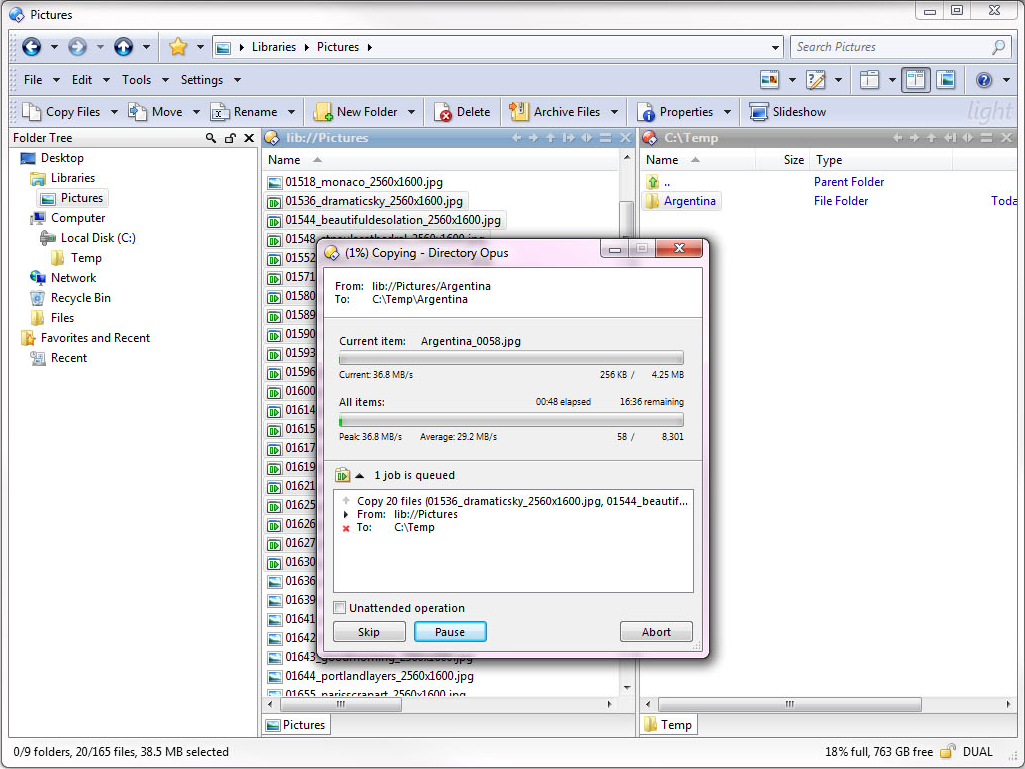 Directory Opus 10 Light, File Management Software Screenshot