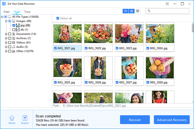 Do Your Data Recovery Professional, Recovery Software Screenshot