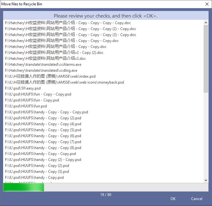 Duplicate Files Software, Duplicate File Finder Plus Screenshot