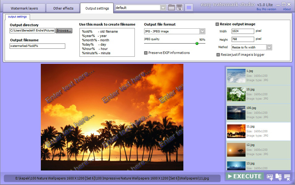 Easy Watermark Studio PRO V.3.4, Photo Manipulation Software Screenshot