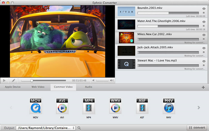 Video Converter Software, Ephnic Video Converter Screenshot