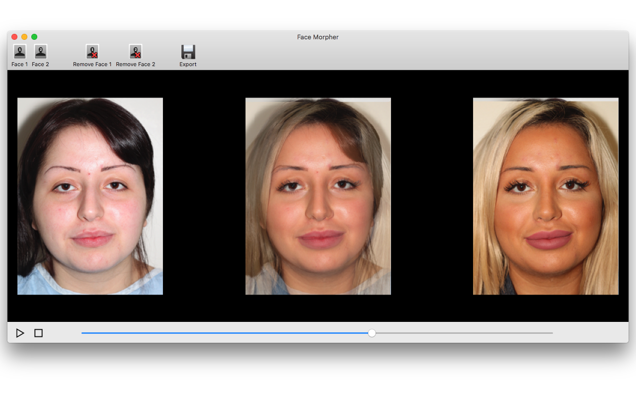 Face Morpher, Misc & Fun Graphics Software Screenshot