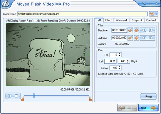 Flash Software Screenshot