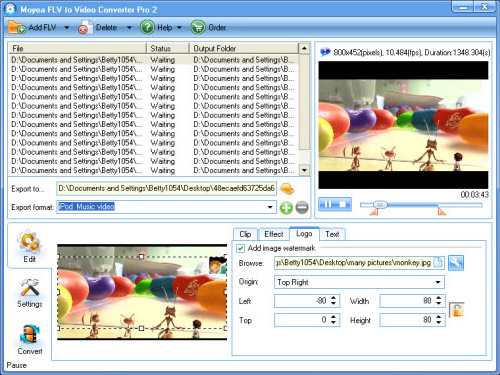 FLV to Video Converter Pro 2, Video Converter Software Screenshot