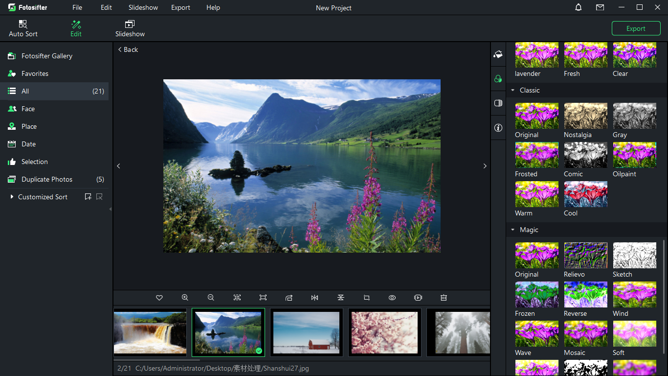 Batch Image Software, Fotosifter (1 Year License) Screenshot