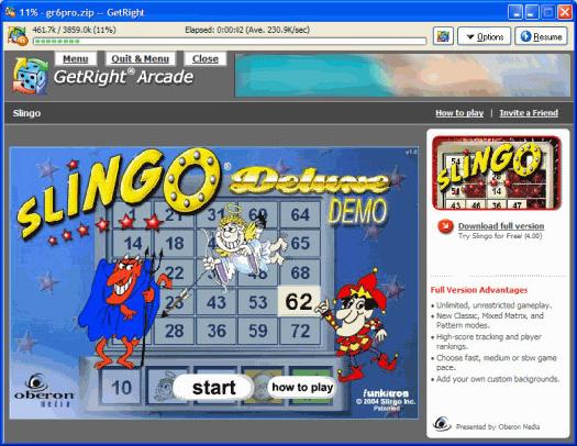 Internet Software, GetRight Screenshot
