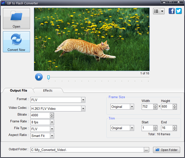 GIF to Flash Converter Screenshot