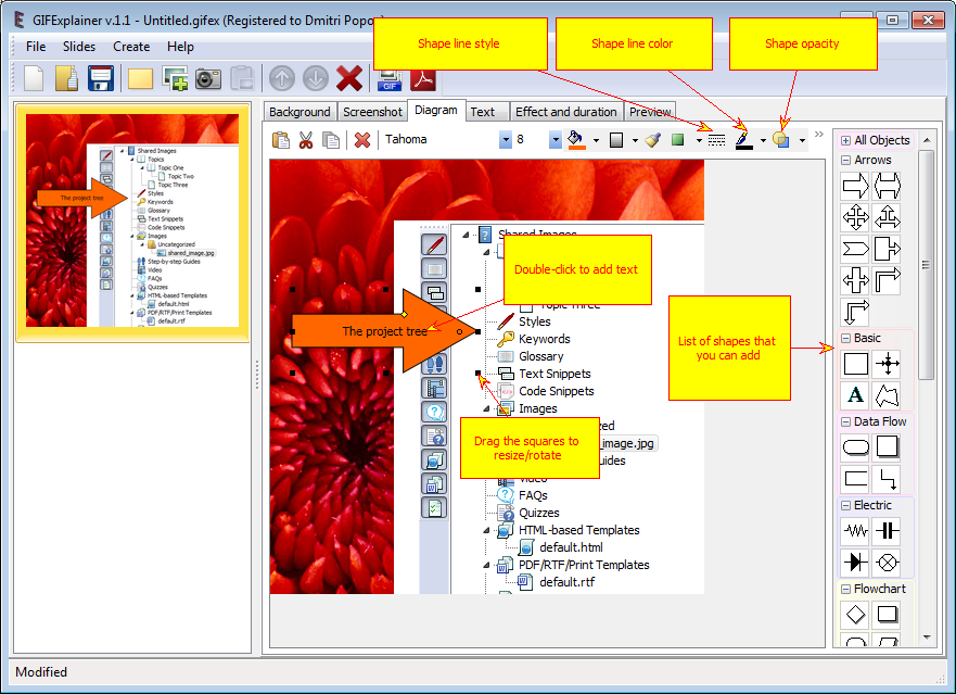 GIFExplainer Lifetime License, Design Tool Software Screenshot