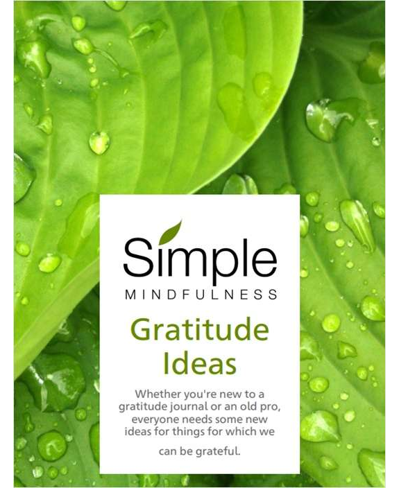 Gratitude Ideas Screenshot