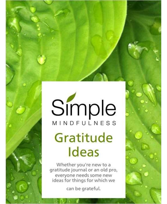 Gratitude Ideas Screenshot