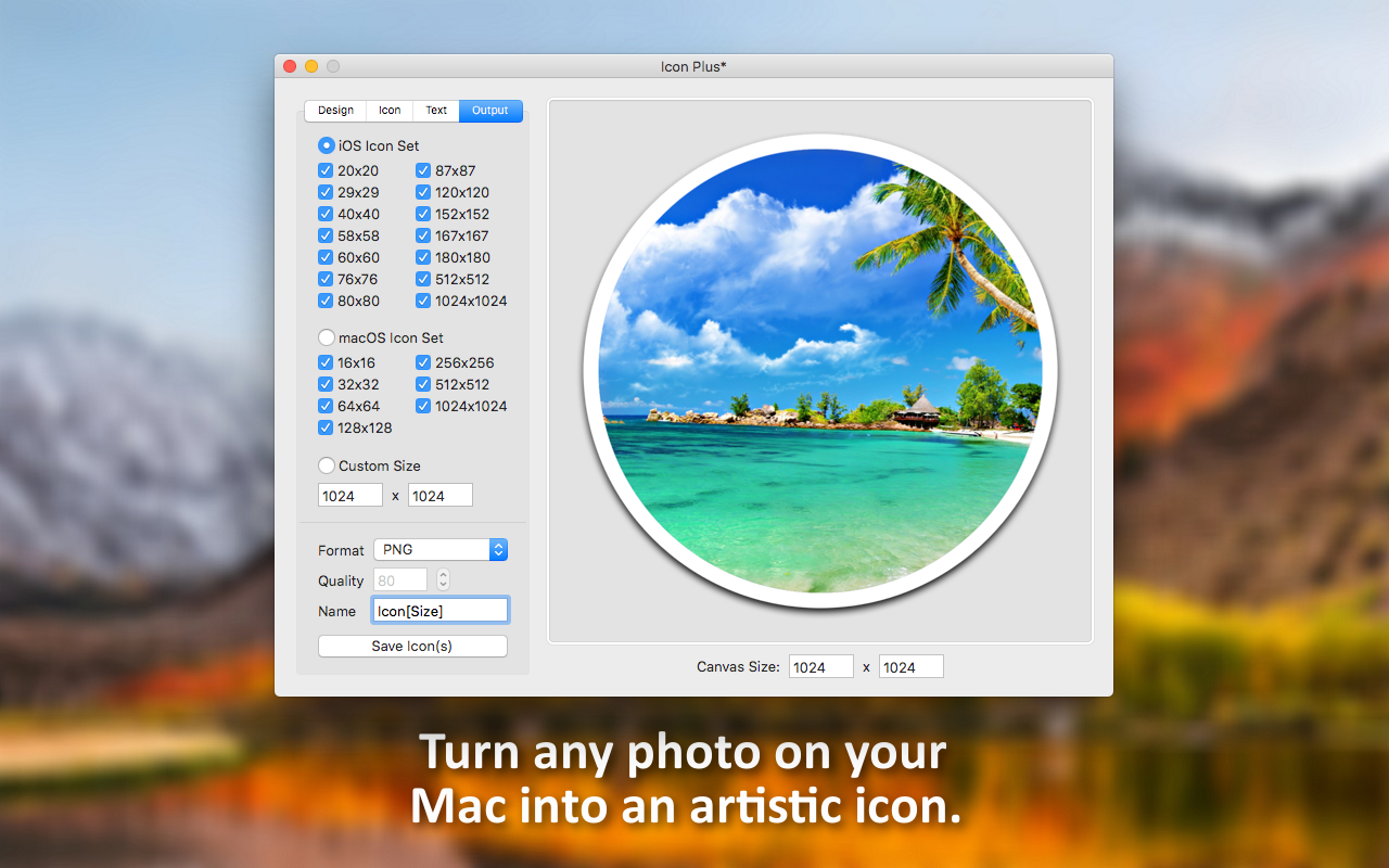 Icons Software, Icon Plus Screenshot