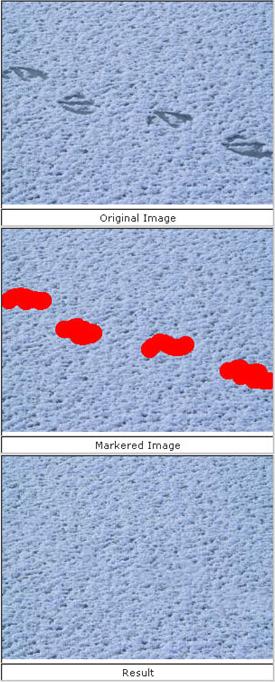 Image Mender, Photo Manipulation Software Screenshot