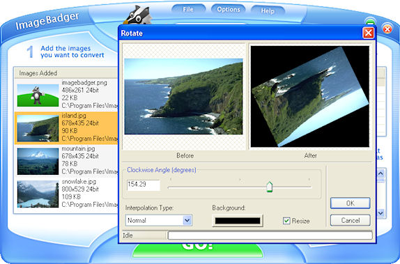 ImageBadger Deluxe, Batch Image Software Screenshot