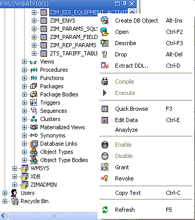 Insight Developer for Oracle, Database Software Screenshot