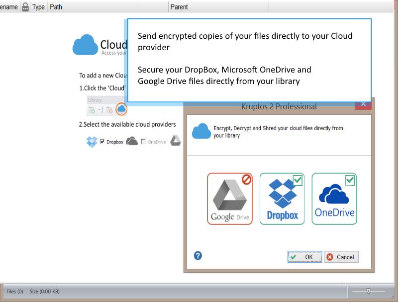 Kruptos 2 Professional, Access Restriction Software Screenshot