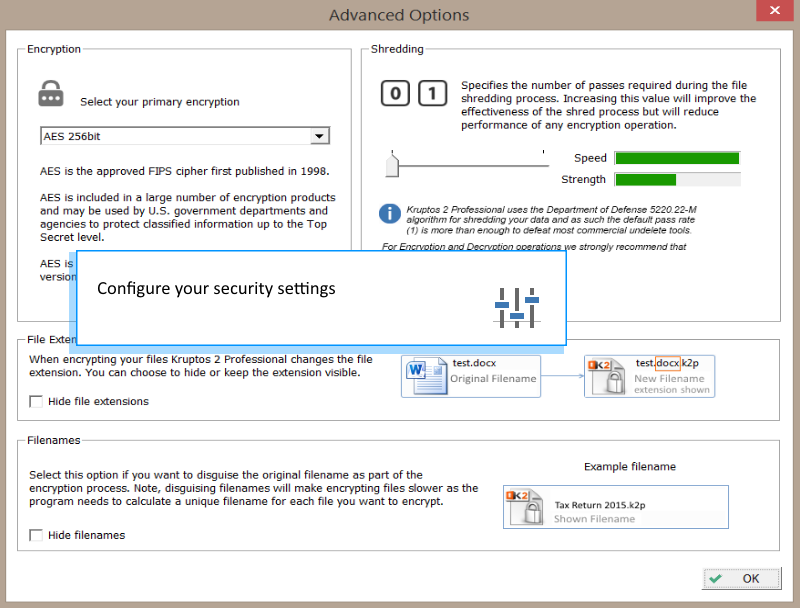 Access Restriction Software, Kruptos 2 Professional Screenshot