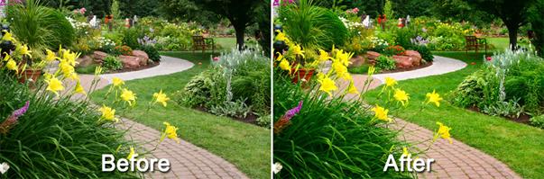 Magic Landscape Filter, Design, Photo & Graphics Software Screenshot