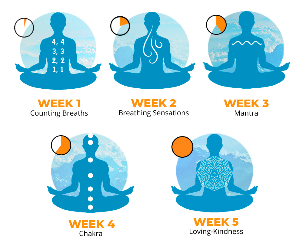 Master Your Mind: 5-Week MEDITATION Course, Hobby, Educational & Fun Software Screenshot
